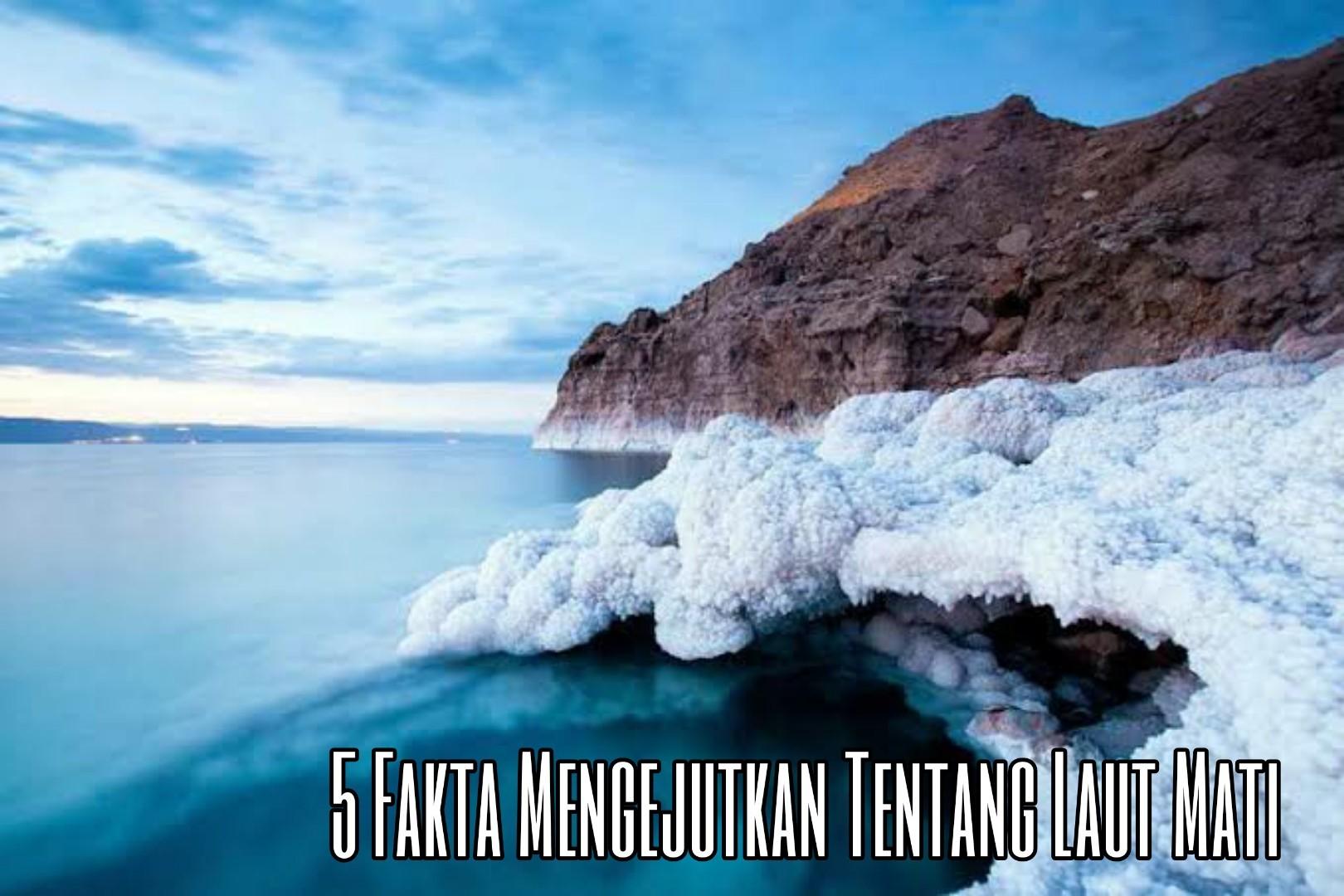 5 Fakta Mengejutkan Tentang Laut Mati