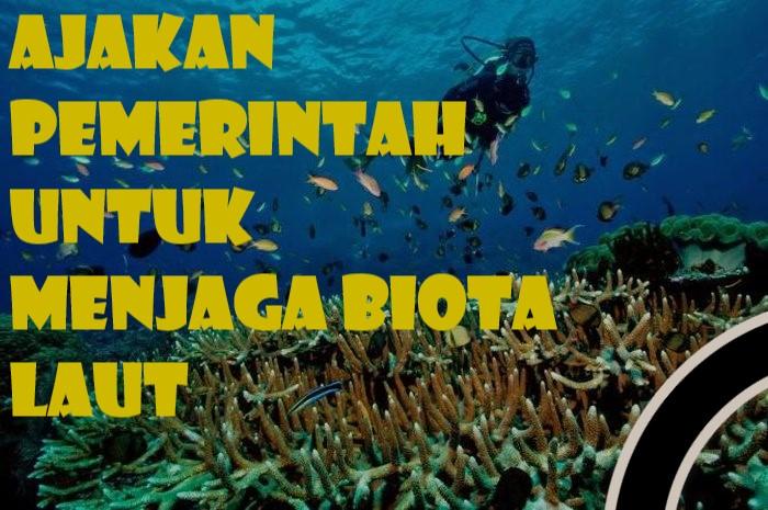 Ajakan Pemerintah Untuk Menjaga Biota Laut